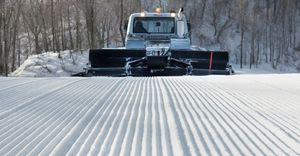 New groomers at Bromley and Stratton
