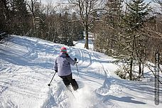 Photo of skier in powder at Vermont's Bolton Valley
