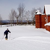 Cross-country skiing in Craftsbury, Vt.