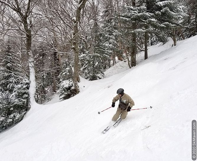 Photo of a telemark skier on a natural snow trail