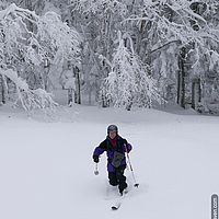 Backcountry skiing in Vermont