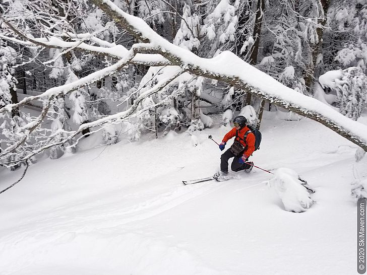 Photo of skier making telemark turn