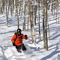 Photo of a telemark skier turning in the powder