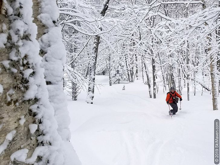 Skiing in the backcountry trails in Bolton, Vermont.