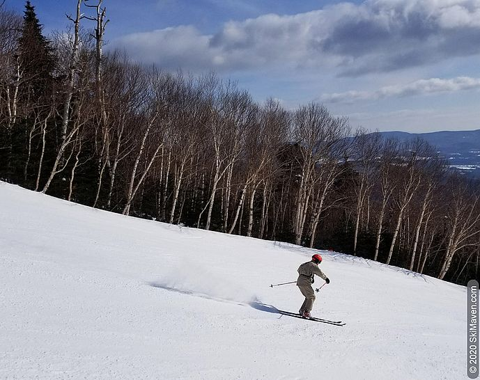 Photo of skier zipping down a birch-lined trail
