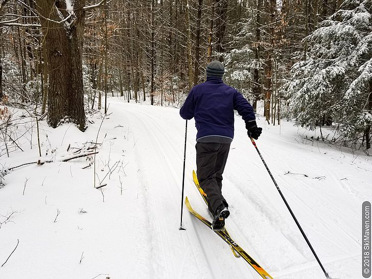 Cross-country skiing in northern Vermont.
