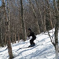 Think snow!!! Skiing the trees at Jay Peak.