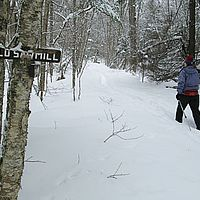 Backcountry ski touring in northern Vermont