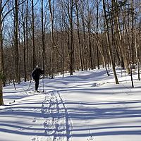 On the cross-country trails at Bolton Valley, Vermont