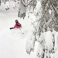 Photo of skier in deep powder that hides lower half of her body