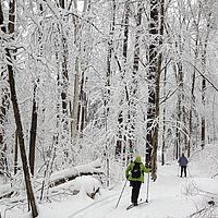 Skiing in a new snow in Vermont