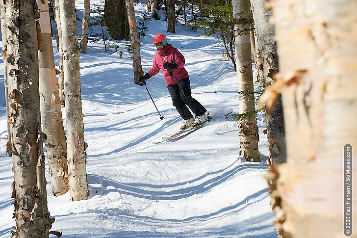 Photo of skier negotiating the trees in Tumbler Woods.