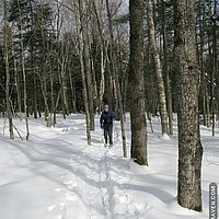 Skiing in Stowe's Sterling Forest