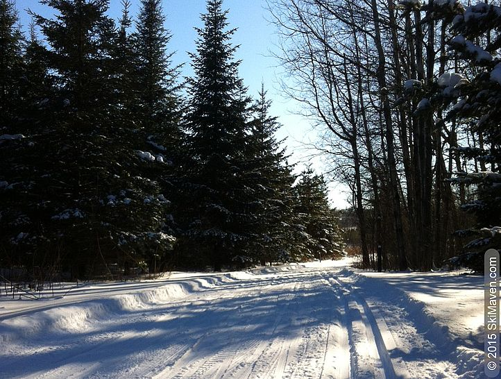 A cold and clear day on ski trails