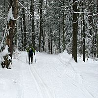 Classic cross-country skiing at Catamount Outdoor Center.