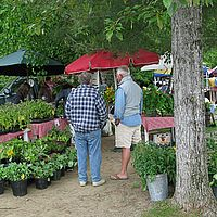 A ski town farmers' market in Stowe, Vermont