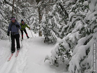 On the Bolton-Trapp ski trail, part of Vermont's Catamount Trail.