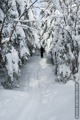 Ah, the beauty of backcountry skiing in Vermont!